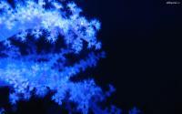 alltheportal-net_wallpaper_pack_1995_images_abstract_1295.jpg