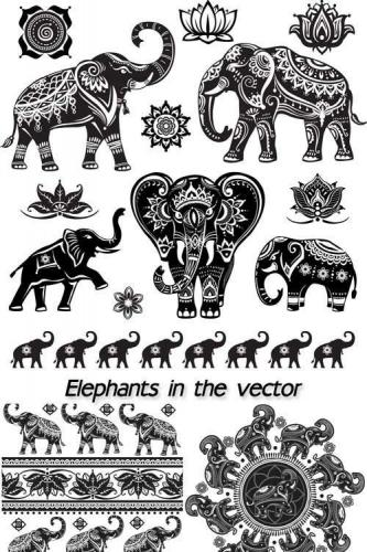 Elephants in the vector, patterns and ornaments