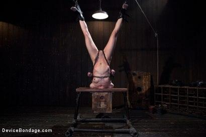 Kink.com- Elise Graves - Harsh Treatment and Predicaments Noir Style - by The Pope!