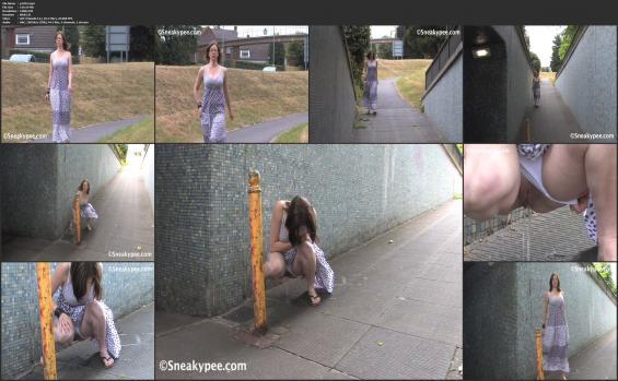 Sneaky pee - p1293