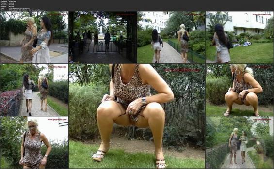 Projectpee.com - 025003