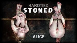 hardtied-20-05-20-alice-stoned.jpg
