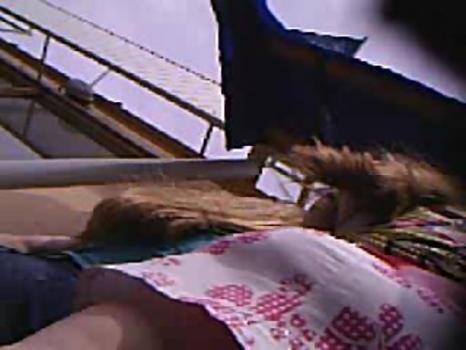 Hidden-Zone.com-Up383# Upskirt video
