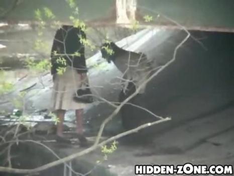 Hidden-Zone.com-Wc288# Voyeur video from toilet